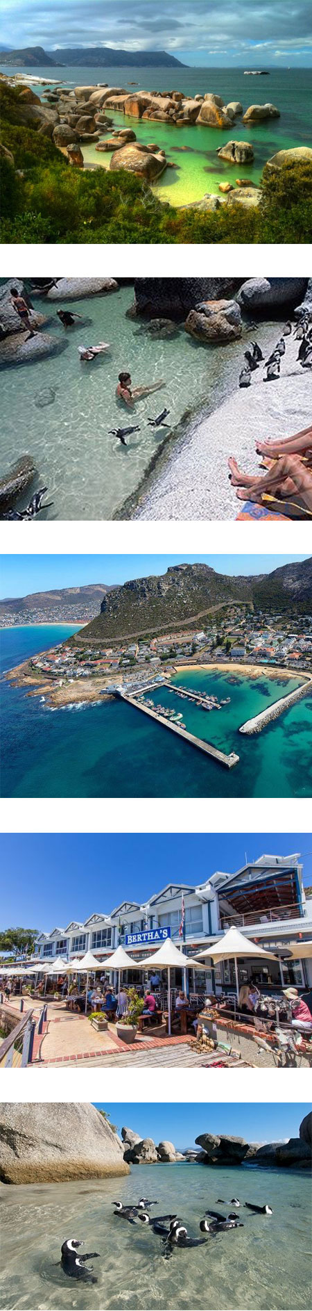 all-simonstown-attractions